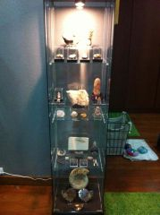 Assorted Fossils Collection Cabinet