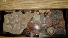 My display drawer