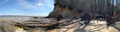 Calvert Cliffs State Park