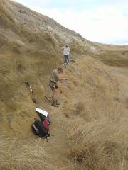 Cretaceous digging