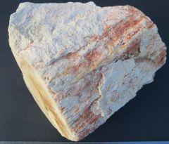 Agathis sp.  limb wood in opal bearing matrix. early Cretaceous (Aptian) Bulldog Shale.White Cliffs Opal Field, New South Wales.