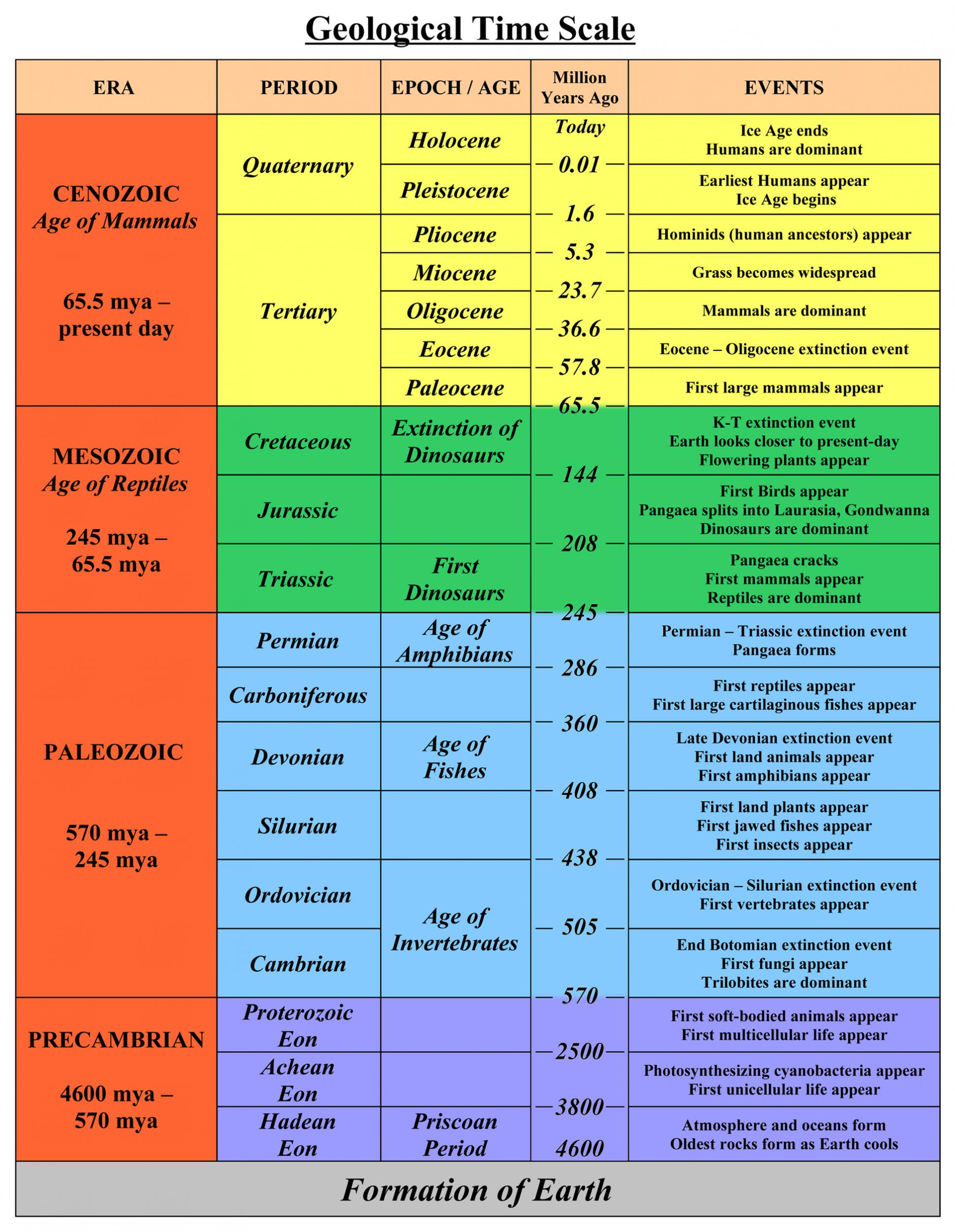 Geological Timeline Chart Documents The Fossil Forum