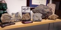 Displaying Fossils on an Office Shelf.jpg