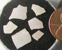 Eggshell, Oligocene.jpg