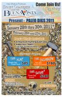 Flyer-for-Digs-2011.jpg