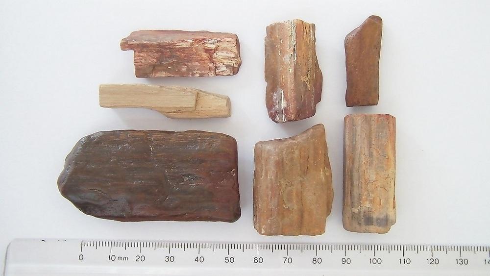5- Wood.JPG