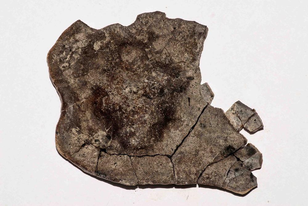 Quarry Unknown FF 005.jpg