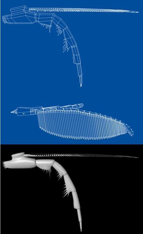 appendice.jpg