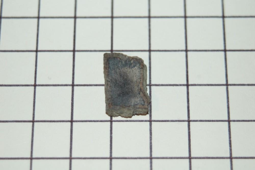 DSC_0061 (Large).jpg