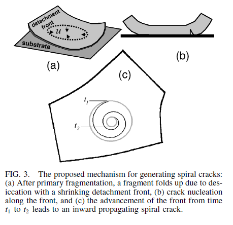 Neda spiral crack formation.png