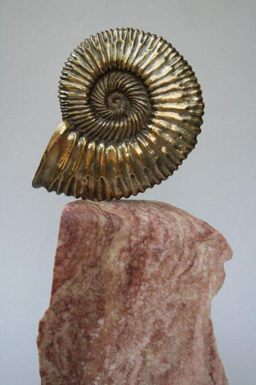 ammonite shell cast bronze sculpture on rose alabaster base left side.jpg