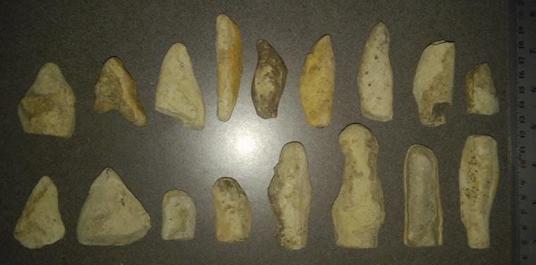 591b2cfb5b541_Fossils1a.jpg.a218309c925f9797917a6edfa925c3a7.jpg