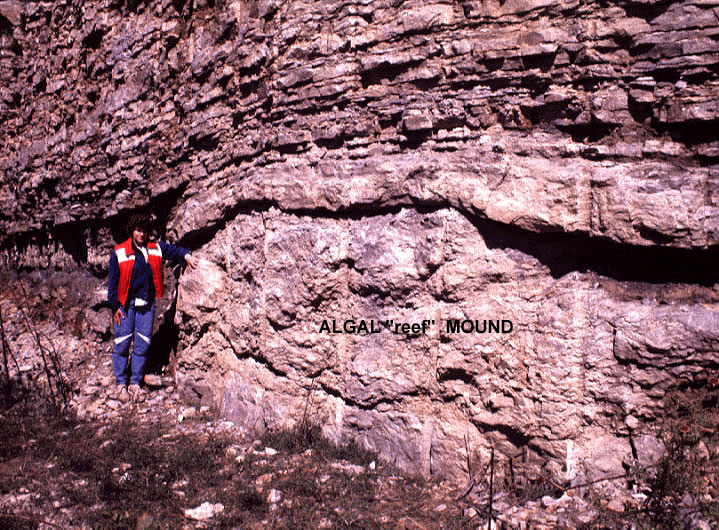 Holliday-Frisbie-Mound-3-circa-1985__geo04.jpg.a475b166a4644ce5b9c6bc4dd82c9e3f.jpg