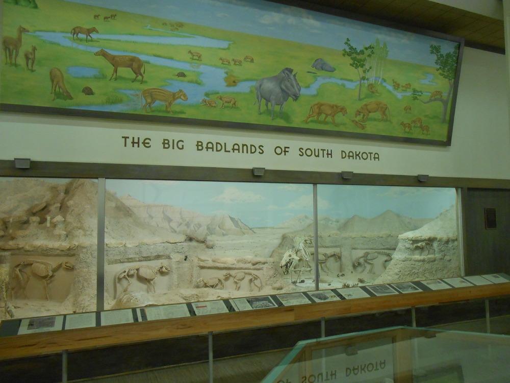 MUS-SouthDakotaSchoolMinesMuseum18.thumb.JPG.8efcdfdd13e503984d2194c5c153f790.JPG