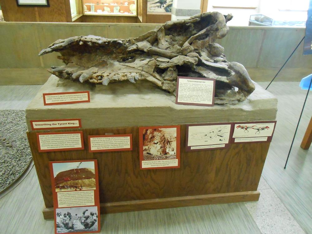 MUS-SouthDakotaSchoolMinesMuseum19.thumb.JPG.72d4c8d1bf3c90b910ebcc17efdbb7ee.JPG