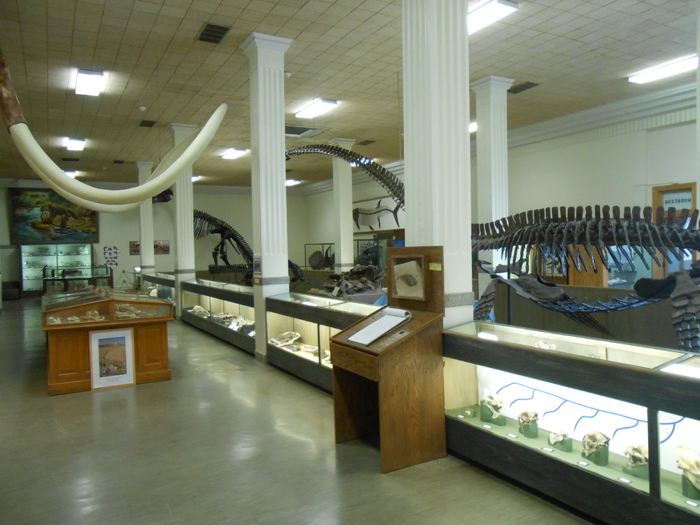 MUS-SouthDakotaSchoolMinesMuseum3.thumb.JPG.9b9c6974c2fdb54ad51ffbc4f3034f0a.JPG