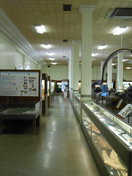 MUS-SouthDakotaSchoolMinesMuseum40.thumb.JPG.482b52bd3b90c8cd9776e5b76d290cb9.JPG
