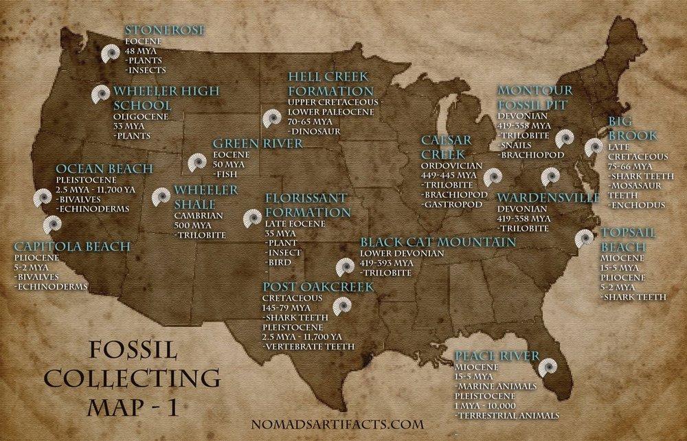 Fossil_Map_1_1024x1024.jpg