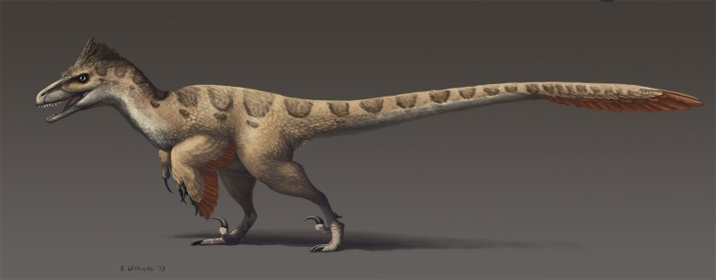 the-most-accurate-inaccurate-utahraptor.jpg.b748697c132935393de990c6878caee0.jpg