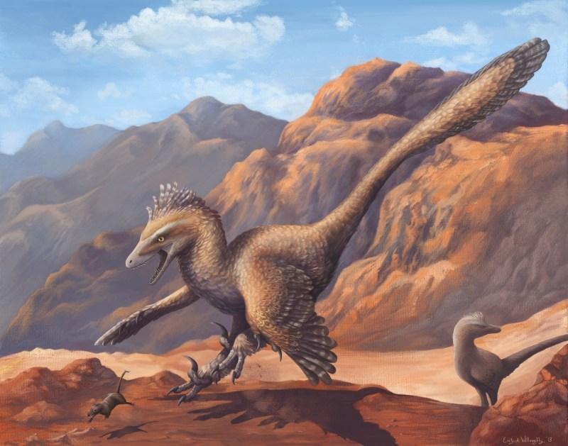 the-velociraptor-hunting-dance.jpg.cf57bca06fadd460181110c7bbf7ffff.jpg