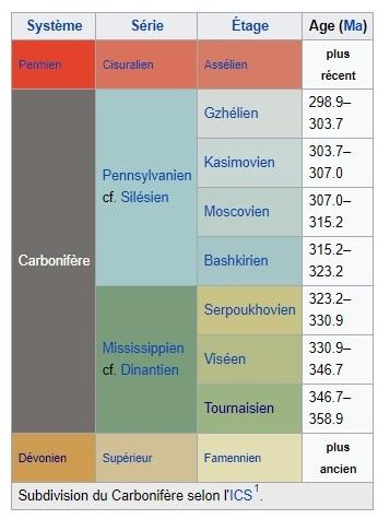 Carbonifère Wikipedia.jpg