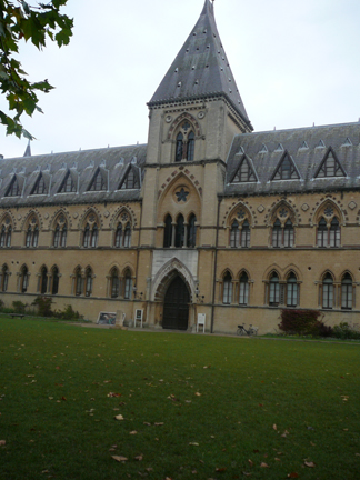 Natural History Museum Oxford.JPG