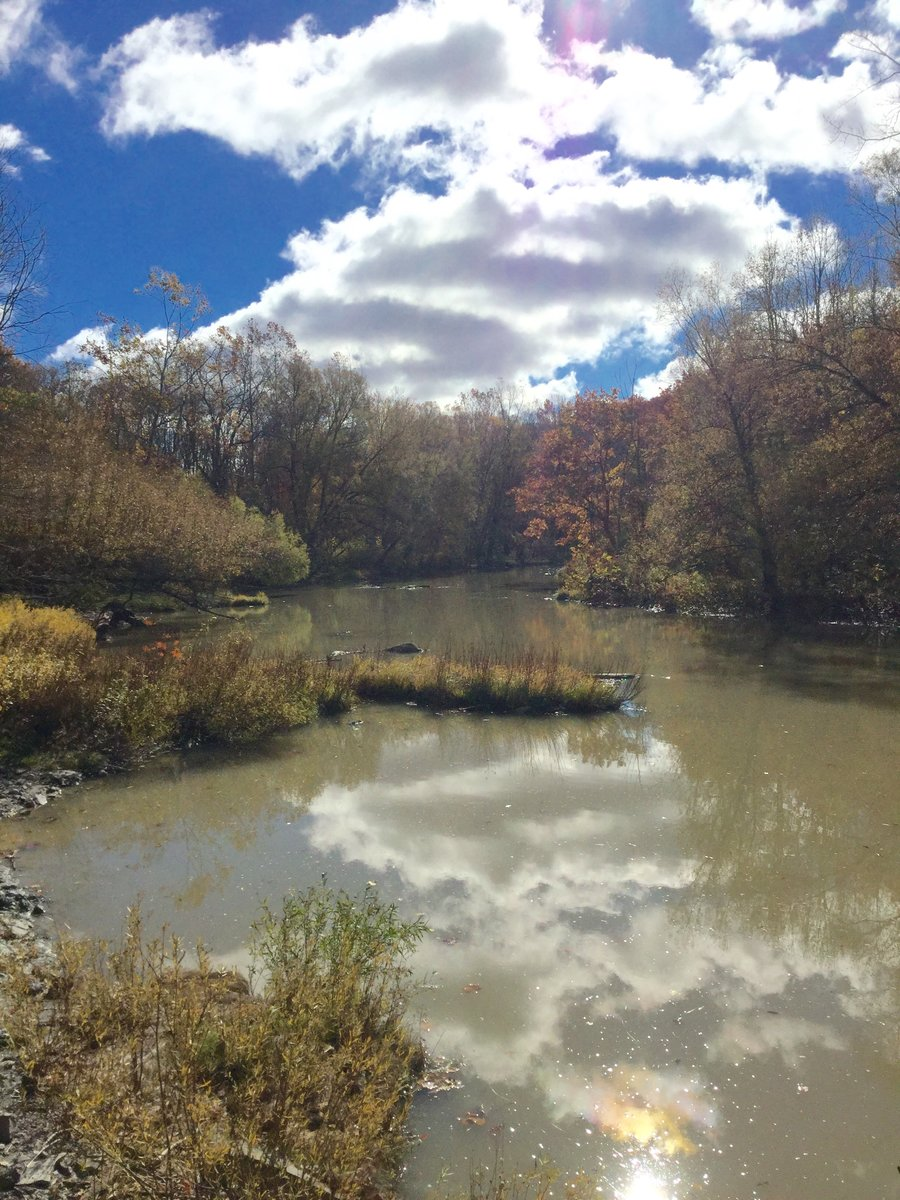 Autumn on the North Bank