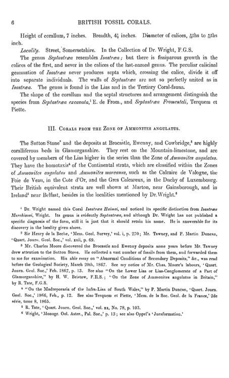 A_Monograph_of_the_British_Fossil_Corals_1000043080-307.thumb.jpg.1b6affed00c7ac5312391980eb2f2746.jpg