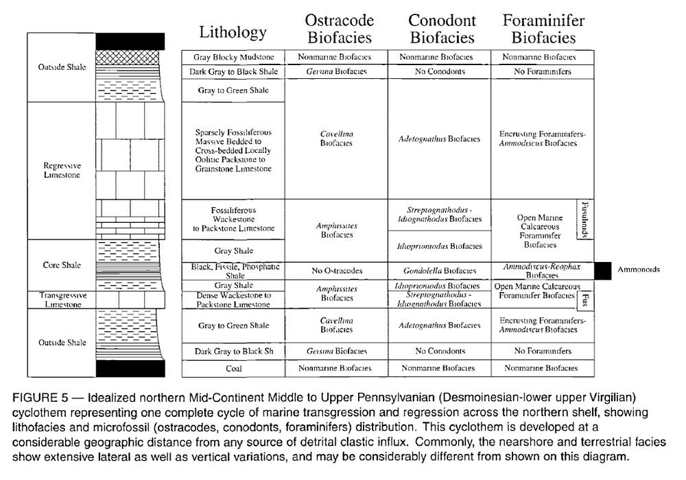 Biostratigraphy-Midcontinent.thumb.png.3df3a510aad36b6f9a00896b287c6b9c.png