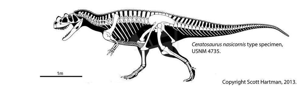 nasicornis.png.2d5524f8400414cdab0afa889990c153.png