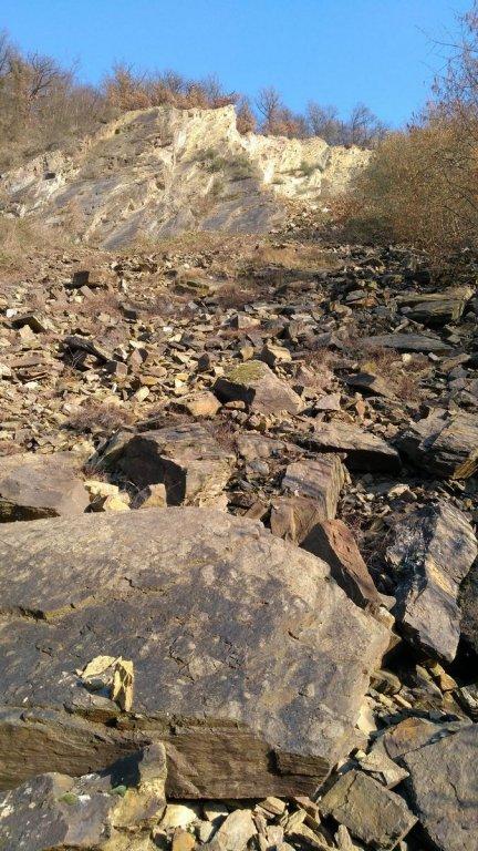 Niederfell-Quarry 21.02.2018 (6).jpg