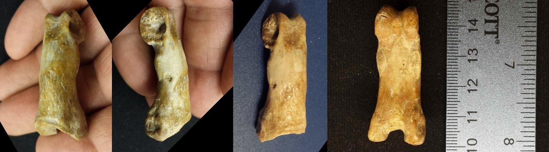 5adc971a524b9_Pantheradigitpanorama.thumb.jpg.e1731a7db1da52cb6bbe214fbc4207bf.jpg