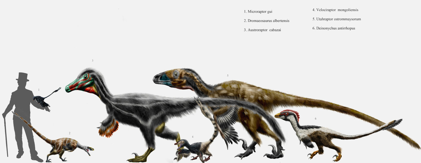 Dromaeosaurid_parade_by_durbed.jpg