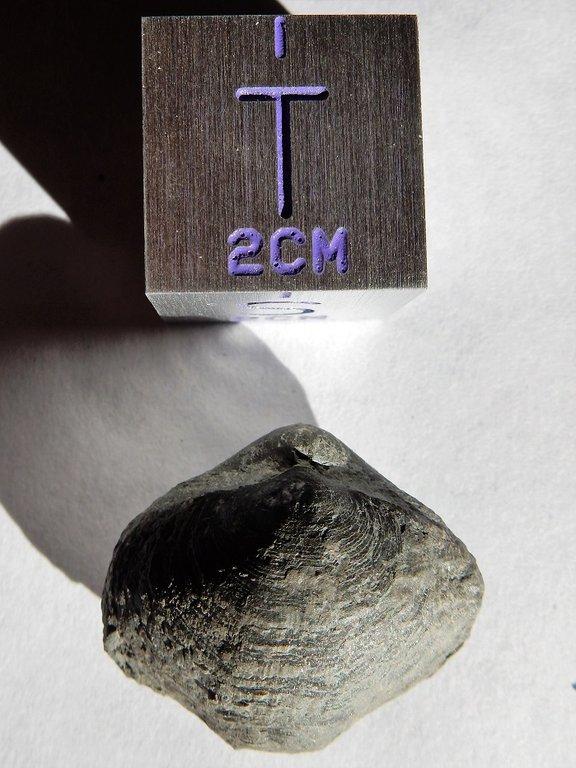 DSCN2915.thumb.JPG.ac4e5269a7ecf5eea9ee94d99b7377c1.JPG