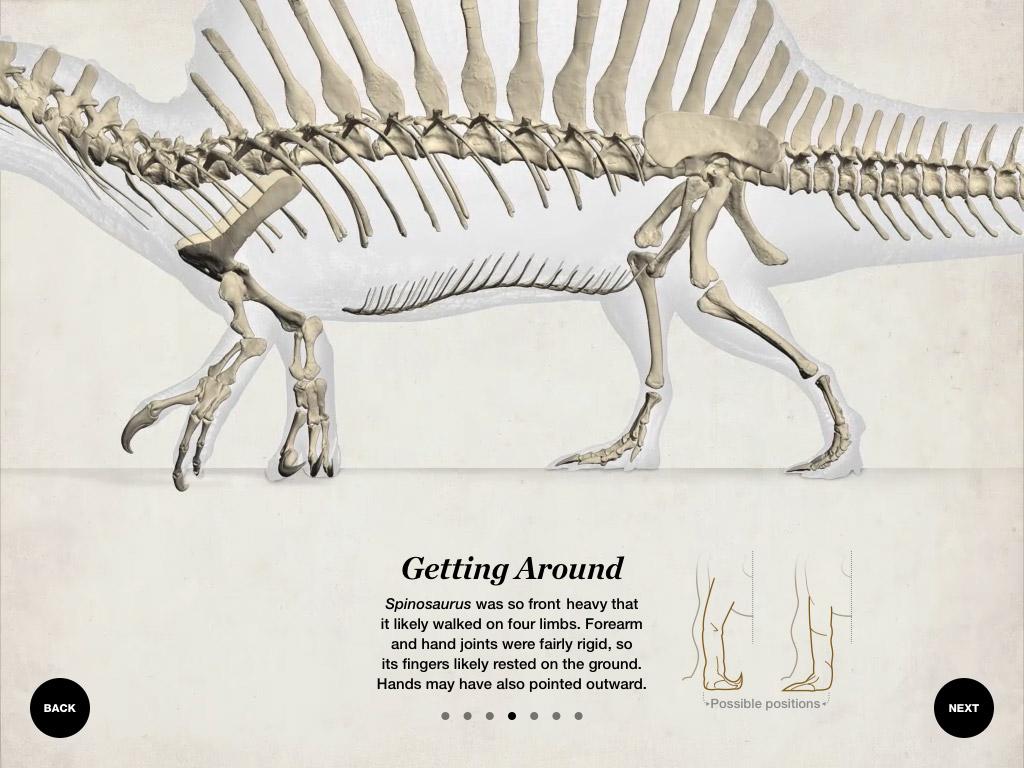 building-spinosaurus-07-walking.jpg.26f9d678d94cfff33ea09d0f8077d7bf.jpg