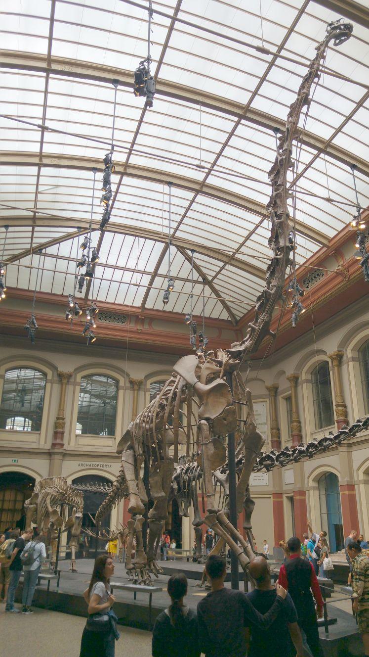 Fossil Berlin