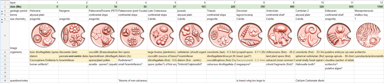 micropaleontology-spreadsheet-01.png