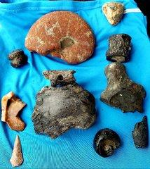 North Sulphur River Finds