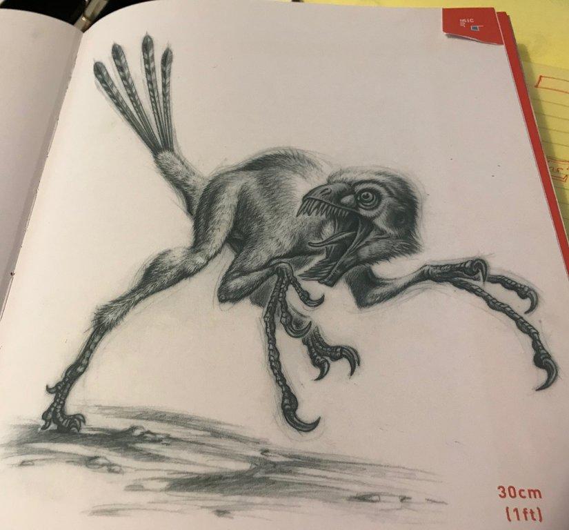 epidexipteryx.thumb.jpg.73278355d2c58acc69d00f603084efb0.jpg
