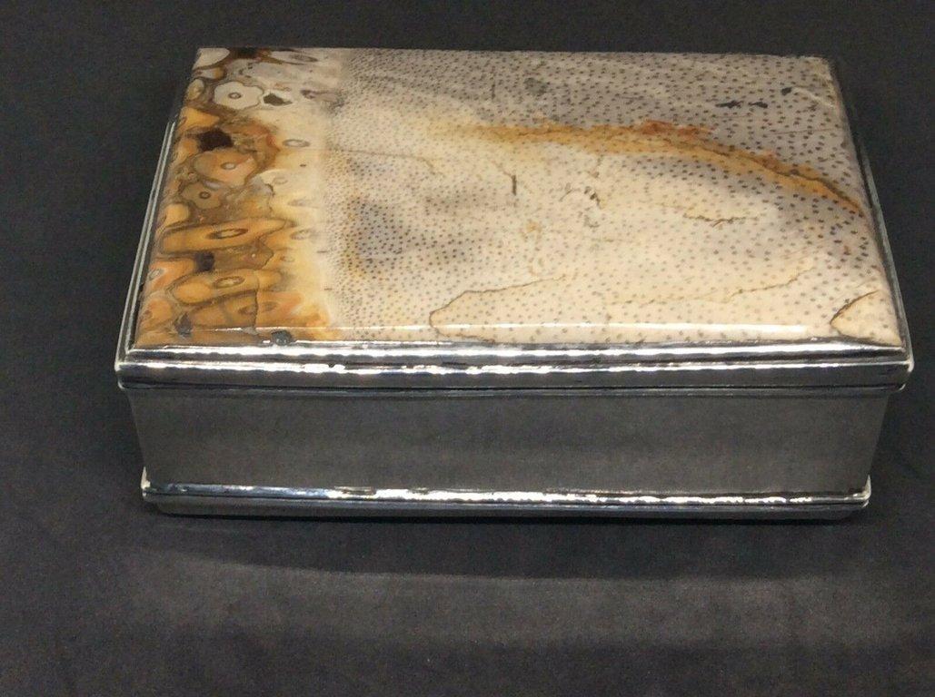 fossil snuffbox 1.jpg