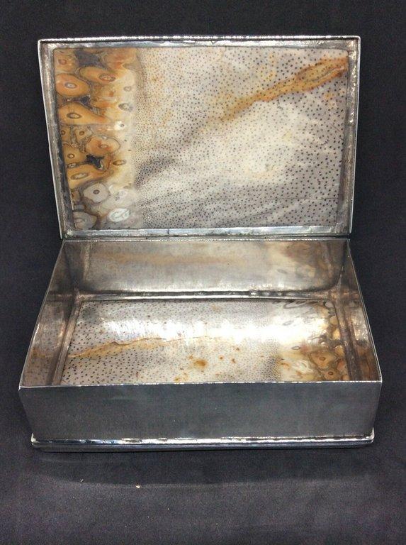 fossil snuffbox 2.jpg