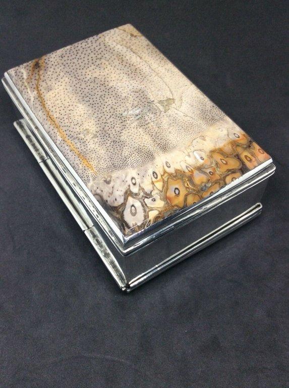 fossil snuffbox 4.jpg