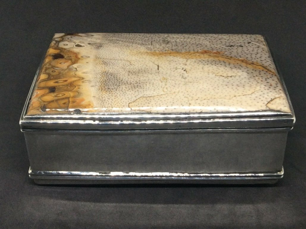 fossil snuffbox 5.jpg
