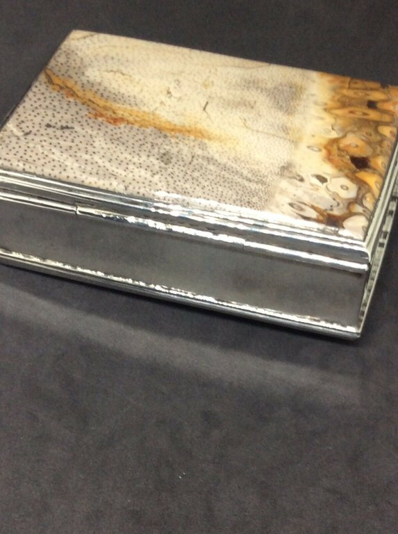 fossil snuffbox 7.jpg