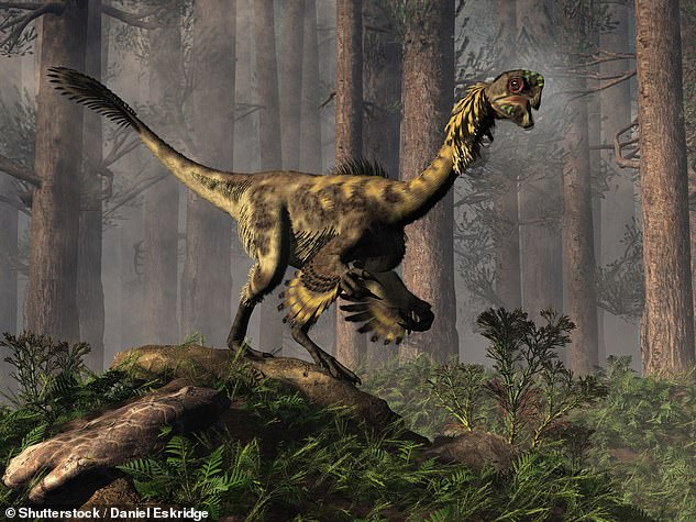 9478066-6674939-The_oviraptorosaurs_artist_s_impression_pictured_lived_during_th-a-1_1549534717050.jpg.fdb314cb3f07f17fe4e4578dabc2f675.jpg