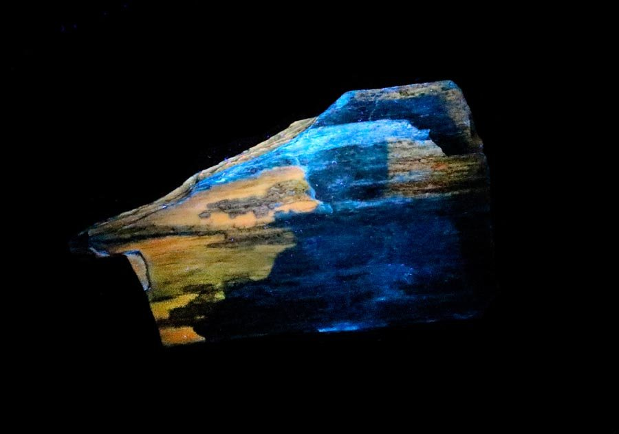 Fluorescent Petrified Wood