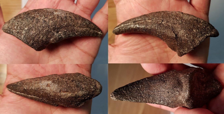 Allosaurus claw 2 resize.jpg