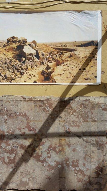 Fossil1.thumb.jpg.5193b4259f6fdb6662df1aa30da9959f.jpg