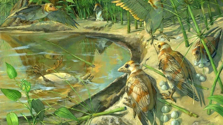 bird-fossil-2.jpg