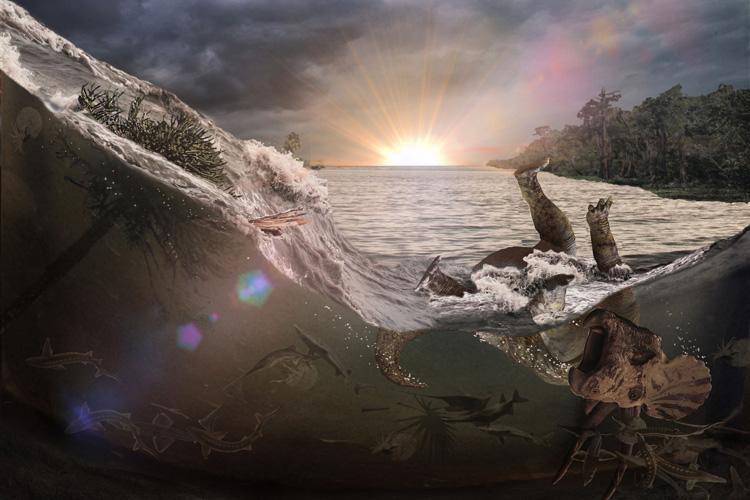 inundation750.jpg.6b9273dd654a723d7e662fe7e5d47b69.jpg
